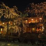 祇園 3月