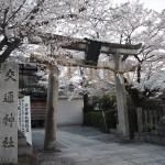 須賀神社 3月