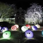 妙顕寺 ライトアップ 3月