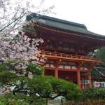 上賀茂神社 3月30日