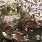 壬生寺 4月1日