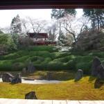 東福寺 光明院 4月1日