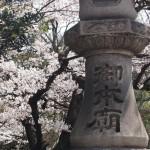 大谷本廟 4月1日