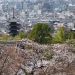 京都霊山護国神社 4月1日