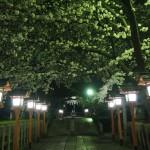 六孫王神社 4月1日