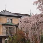 長楽館(円山公園) 4月2日