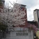 同志社大学 4月2日