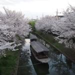 伏見 4月2日