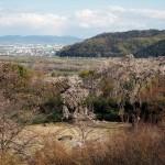 大山崎山荘美術館 4月