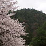 嵐山高尾パークウェイ入口 4月3日
