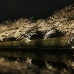琵琶湖疏水 4月3日