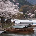 嵐山 4月3日