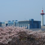 京都タワー 4月4日
