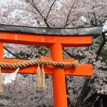 剣神社 4月4日