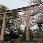 豊国神社 4月4日
