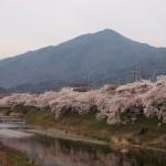 高野川と比叡山 4月4日