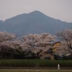 賀茂川と比叡山 4月4日