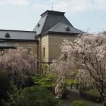 京都府庁旧本館 4月5日