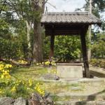京都御苑 県井