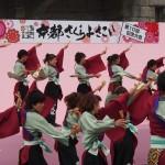 京都さくらよさこい 4月
