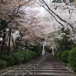 宗忠神社 4月5日