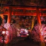 貴船神社 ライトアップ 4月