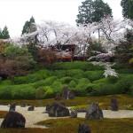 東福寺 光明院 4月