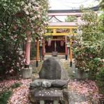 千本釈迦堂 4月