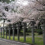 久世神社 4月