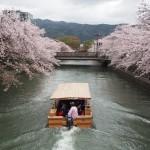 琵琶湖疏水 4月