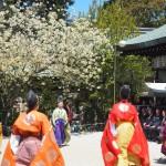 白峯神宮 蹴鞠 4月