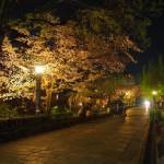 祇園白川 4月