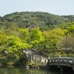 円山公園 4月