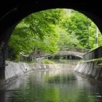 琵琶湖疎水船 4月