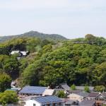 姫路城の西の丸から見る男山