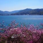 獅子崎稲荷神社からの眺め 4月