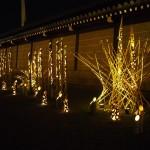 西本願寺の夜間拝観