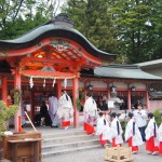 西院春日神社 藤花祭