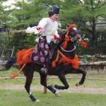 競馬会足汰式 美作国倭文庄の馬