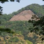 竹中稲荷神社からの大文字