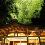 貴船神社 新緑のライトアップ