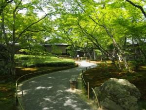 緑の美しい宝厳院