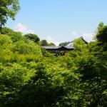 東福寺 5月