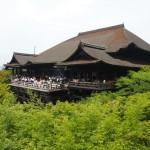 緑の清水寺