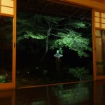 瑠璃光院のライトアップ