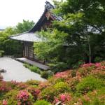 金福寺の皐月