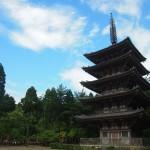 醍醐寺 6月