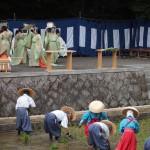 伏見稲荷大社 田植祭 6月