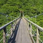 二瀬川渓流 6月