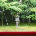 大徳寺 高桐院